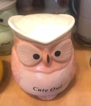 Cana pentru ceai  cu capac - bufnita - model roz